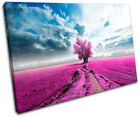 Surreal Tree Pink Landscapes SINGLE CANVAS WALL ART Picture Print VA
