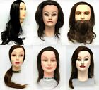 Cosmetology Mannequin Head with Hair - BRAND NEW!