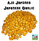 AJO JAPONES (JAPANESE GARLIC) 100% NATURAL!!! 150-250-400 PER BAG