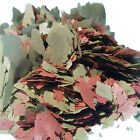 Cichlid Gro Color Flakes, FREE 12-Type Blackworm/Color Pellet Blend Included.