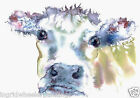 WATERCOLOUR COWS SHEEP ANIMALS PRINTS FROM MOON HARES ART PAINTINGS & PRINTS