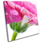 Flower Water Drops Floral SINGLE CANVAS WALL ART Picture Print VA