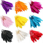 Wholesale 100pcs Goose Quill Feathers 10cm to 15cm 4-7inch Arts Crafts Decor DIY
