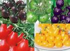20/100/200 Lot Variety Special Rare Organic Vegetable Tomato Seed Cherry 5 Color