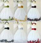 Gorgeous Ivory red gold silver sage black  rose petals flower girl party dress