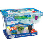fishing kits for kids