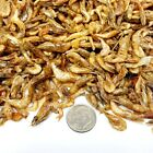 Red Shrimp--Freeze Dried  1/2' to 1 &1/2'  Ideal for most Fish, Koi, Turtles