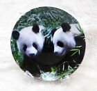 Free shipping China porcelain-Painting Panda-plate decoration- 3.9Inch-