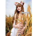 Spice and Wolf Holo Brown Long Straight Hair Anime Cosplay Full Wig