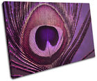 Peacock    PURPLE PINK Abstract SINGLE CANVAS WALL ART Picture Print VA
