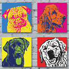 Pop Art Dogs 2 Canvas Print - The Dogs Of Andy Warhol 2 gift bright colours Med