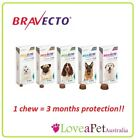 Bravecto Chews for DOGS/ Flea and Tick Treatment For Dogs in a Chew - ALL SIZES