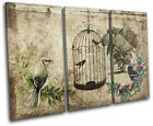 Garden Vintage Bird  Floral TREBLE CANVAS WALL ART Picture Print