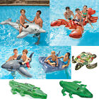 Inflatable Ride On Novelty Swimming Pool Beach Toy Float Rider Lilo Swim
