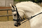 Rhinegold German Leather Comfort Double Bridle Black Brown All Sizes inc. Reins