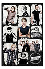 5 Seconds Of Summer 5SOS Derping Since 2011 Poster New - Maxi Size 36 x 24 Inch