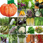 NEWLY Heirloom Garden vegetable seed Non-GMO seeds bank survival organic plant