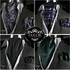 Brand New Mens Smart Casual Silk Italian Cravat & Hanky Handkerchief Set Paisley
