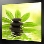 STONES ZEN GREEN LEAVES MODERN DESIGN CANVAS PRINT READY TO HANG