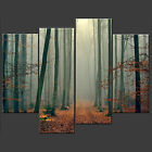 STUNNING MISTY FOREST CASCADE CANVAS PRINT POSTER READY TO HANG