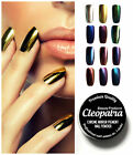 New Trend Mirror Chrome Effect Nail Powder Pigment Dust Shine SILVER GOLD HOLO