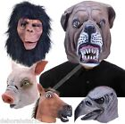 Adult Mask Dog Farm Bird Mask Halloween Mask Fancy Dress Costume Panto Prop