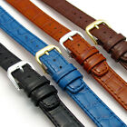 CONDOR 'Louisiana' Leather Watch Band Alligator Grain 12mm 14mm 169R