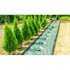 100gsm Heavy duty 105sqm-(100x1,05m) Weed Control Fabric Membrane,GREEN +Pegs