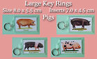 Large Key Rings Pigs