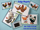 FRIDGE MAGNETS Poultry & Bantam Breeds, Pekins Sussex Orpingtons Marans Silkies