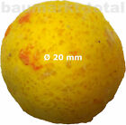 Yellow Zombie Boilies Radical Quantum Karpfen-Futter 1kg 16 oder 20mm Boilie