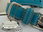 NEW last ones COACH TEAL BLUE OPEN GROMMET SMALL LARGE LEATHER DOG COLLAR S L