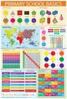 PRIMARY SCHOOL BASICS EDUCATIONAL POSTER (61x91cm)  PICTURE PRINT NEW ART