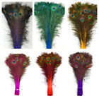 "DYED PEACOCK Feathers 30-45"" Various colors; Halloween/Costume/Bridal/Burlesque"