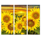 sun flowers paintings canvas buy cheap paintings  3324193856944040 1 Buy SunFlower Oil Paintings on canvas sun flowers oil paintings most popular oil paintings  Oil Painting on canvas