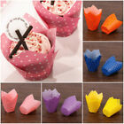 100Pcs Dots Cupcake Wrapper Liners Muffin Tulip Case Cake Paper Baking Cup