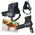 Dog Pet Adjustable Safety Harness Padded Walking Collar Control Chest Strap Belt