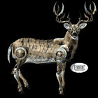Deer T Shirt Long Sleeve Trapping Hunting 10 point Buck outdoors woods stag