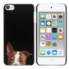 For Apple iPod Touch 5 5th/ 6 6th Generation Dog Design Hard Back Case Cover