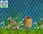 """POULTRY NET 6' PROTECTIVE GAME BIRD CHICKENS DUCKS PEN QUAIL AVIARY NET 2""""  #208"""