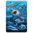 Shark Infested Waters Great White Home Business Office Sign
