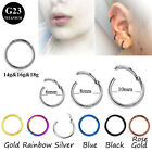 100% Titanium Hinged Segment Ring Hoop Ear Lip Nose Piercing Septum Cliker   image