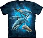Shark Collage Aquatics T Shirt Adult Unisex The Mountain