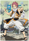 Anime Fairy Tail Natus Characters Poster Group High Grade Glossy Laminated