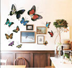 Metal Butterfly  Wall Hanger Wall Art Home Decor  Garden Decor