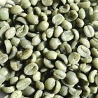 5 lbs Kenya Bourbon Nyeri AA Top Lot Raw Unroasted Green Coffee Beans Fresh Crop