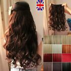 "24"" clip in hair extensions ginger plum red Blonde Mahogany Auburn feels human"
