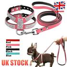 Small Dog Harness Leash Suede Leather Rhinestone Pet Harnesses Walking Leadsh UK