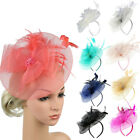 Fascinator Women's Mesh Organza Church Kentucky Derby British Bridal Tea Party