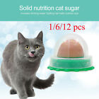 12x Cat Treats 'Kitty Chups' Healthy Cat Snacks Catnip Sugar Candy Nutrition Gel